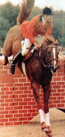 На дону советский спортсмен конный